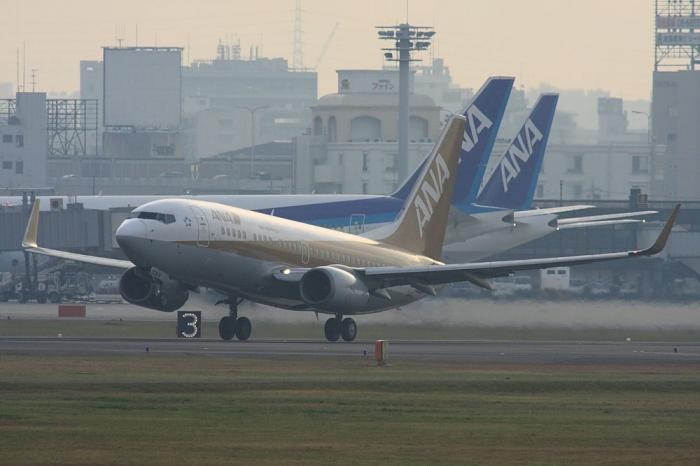 ANA B737-781 ANA521@RWY14Rエンド・猪名川土手(by 40D with SIGMA APO300/2.8EX+APO TC2x)