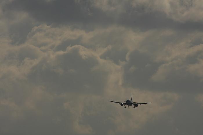 東の空の雪雲&ANA A320-211 ANA542@RWY14Rエンド・猪名川土手(by 40D with SIGMA APO300/2.8EX+APO TC2x)