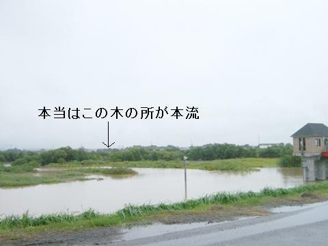 雨野次馬5