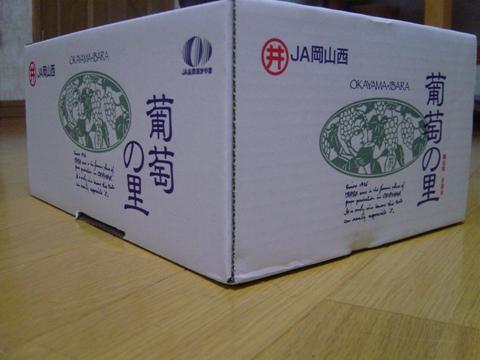 2011岡山箱