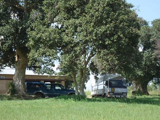 ザンビアの車5