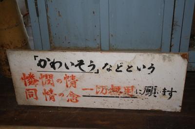 2009.10.11 四国旅行 018
