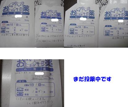 DSC00482のコピー