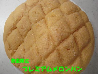 DSC00479のコピー