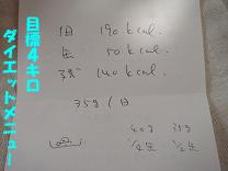 DSC01327のコピー