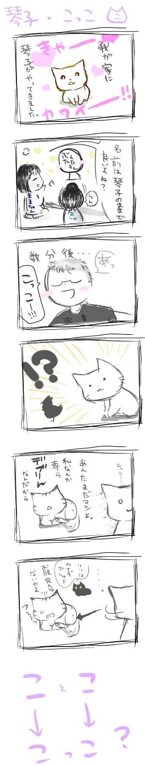 琴子・こっこ