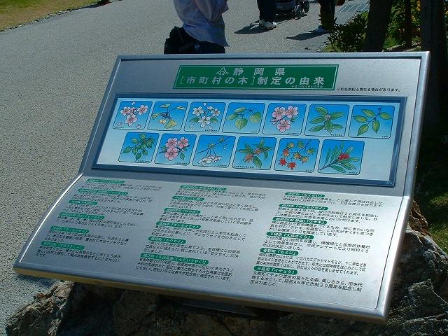 hanahaku3-31.jpg