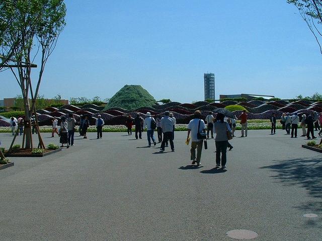 hanahaku3-58.jpg