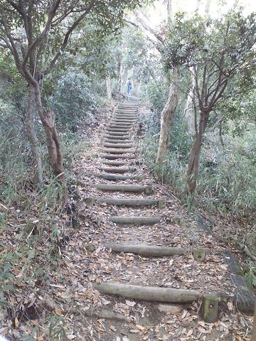 長~い階段