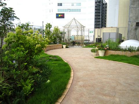 INOBUNの屋上緑化