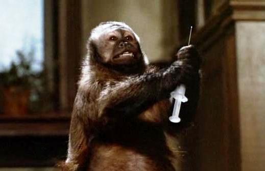 monkey-shines-monkey-syringE