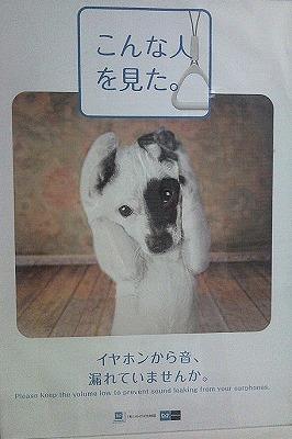 Photo032-s.jpg