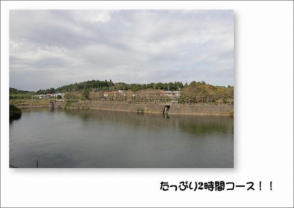 2009101003.jpg