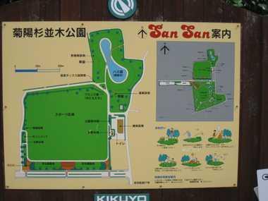 菊陽杉並木公園