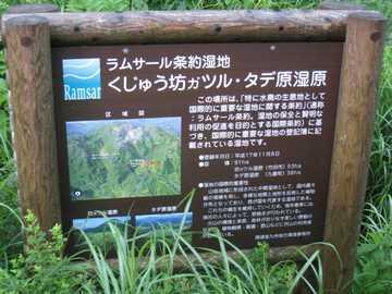 タデ原湿原2