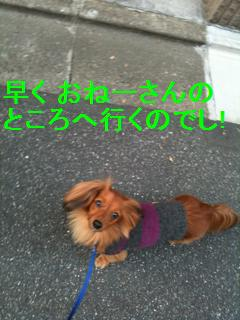 Photo_20100111.jpg