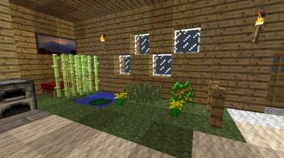 自宅1階 緑スペース