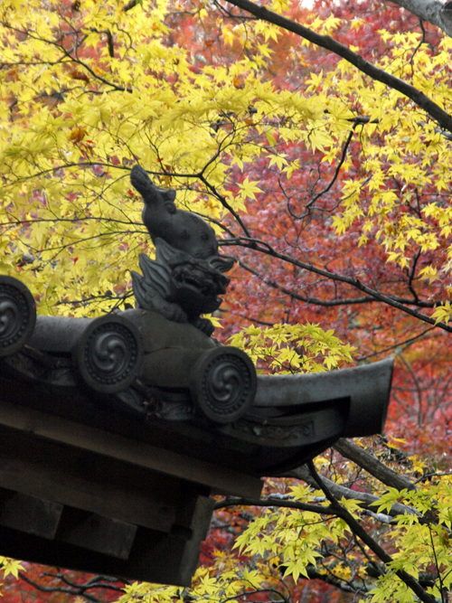 09-11-23-mimiji3.jpg