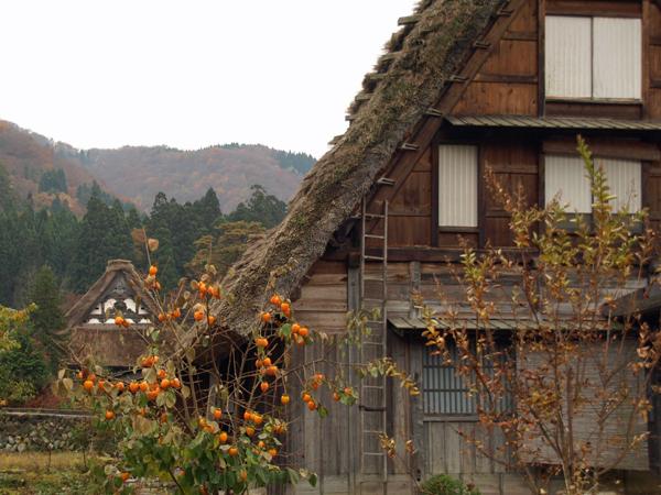 09-11-8-sirakawa4.jpg
