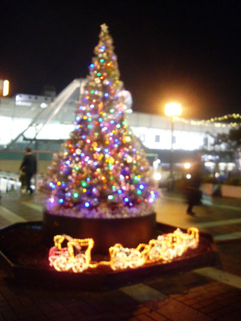駅側のツリー