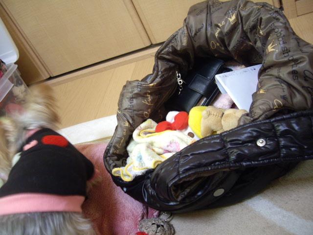 ママのバッグは宝物いっぱい入ってます
