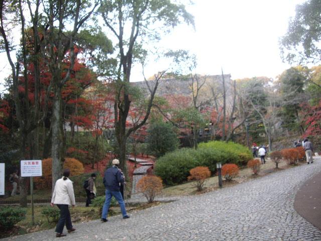 生田緑地です
