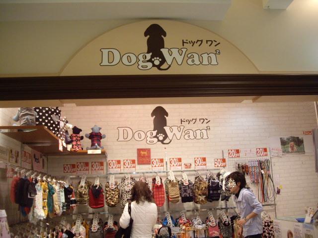 コピー ~ Dogwanさん