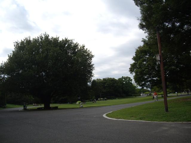 大きな公園でお散歩