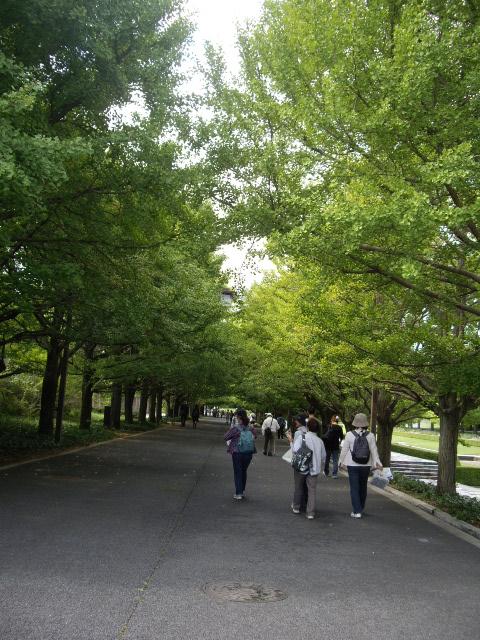公園でお散歩だよ