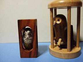 Owls_001
