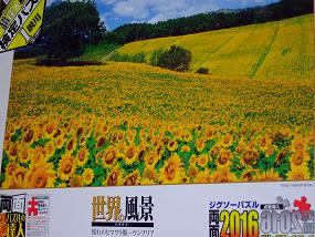 jigsaw_SunflowerFieldUmbria_2016_000