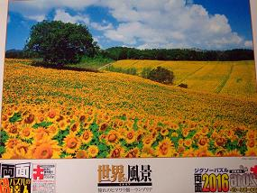 jigsaw_SunflowerFieldUmbria_2016_001