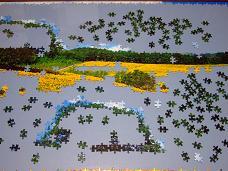 jigsaw_SunflowerFieldUmbria_2016_006