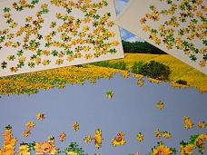 jigsaw_SunflowerFieldUmbria_2016_014