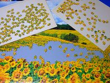 jigsaw_SunflowerFieldUmbria_2016_016