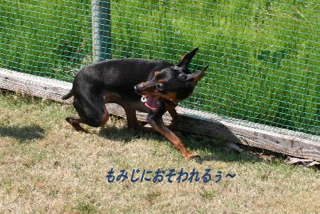 yamanoue2-7.jpg