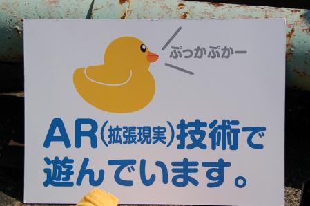 ARアヒル1