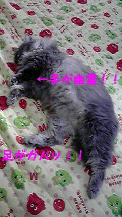 2009101813540000.jpg