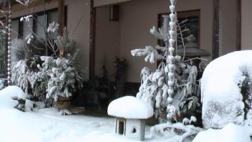 雪22.1.13a