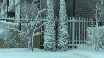 雪22.1.13d