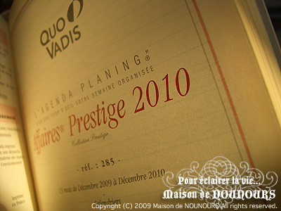 スケジュールブック2010