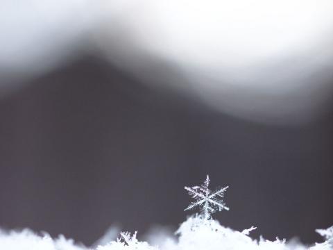 雪の結晶120112