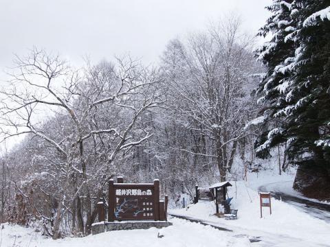 野鳥の森入口120226