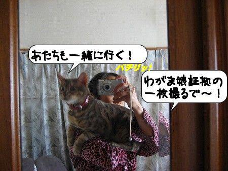 20091114_135541.jpg