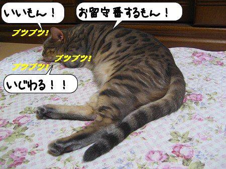 20091114_142618.jpg