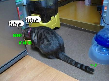 20091119_234319.jpg