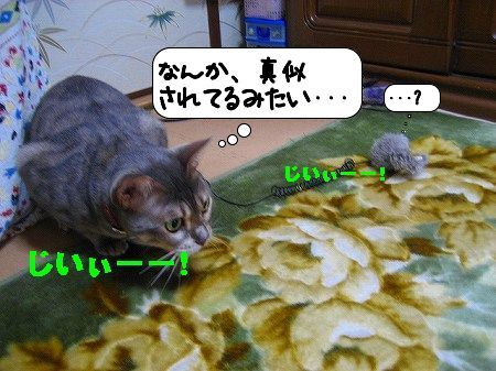 20091203_231536.jpg