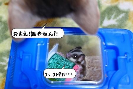 20100130_133108.jpg