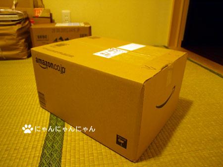 New_box1