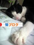 ranking_qoo01